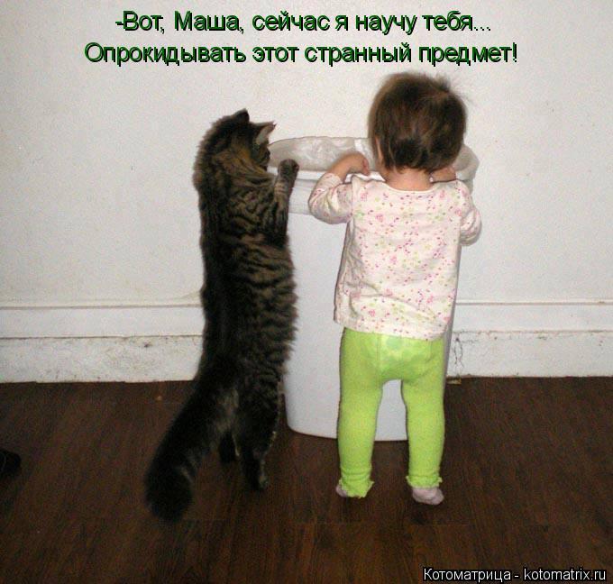 Котоматрица: -Вот, Маша, сейчас я научу тебя... Опрокидывать этот странный предмет!