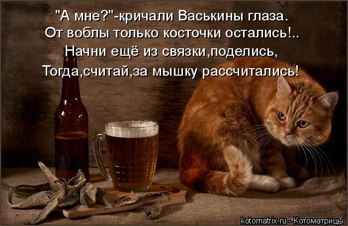 """Котоматрица: """"А мне?""""-кричали Васькины глаза. От воблы только косточки остались!.. Начни ещё из связки,поделись, Тогда,считай,за мышку рассчитались!"""