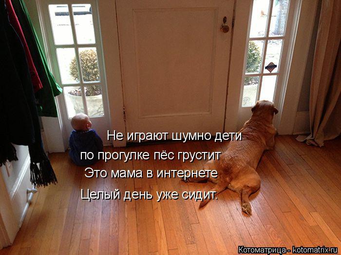 Котоматрица: Не играют шумно дети по прогулке пёс грустит Это мама в интернете Целый день уже сидит.