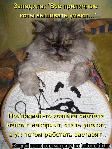 """Котоматрица: Заладила: """"Все приличные  коты вышивать умеют..."""" Приличная-то хозяйка сначала напоит, накормит, спать уложит, а уж потом работать заставит..."""