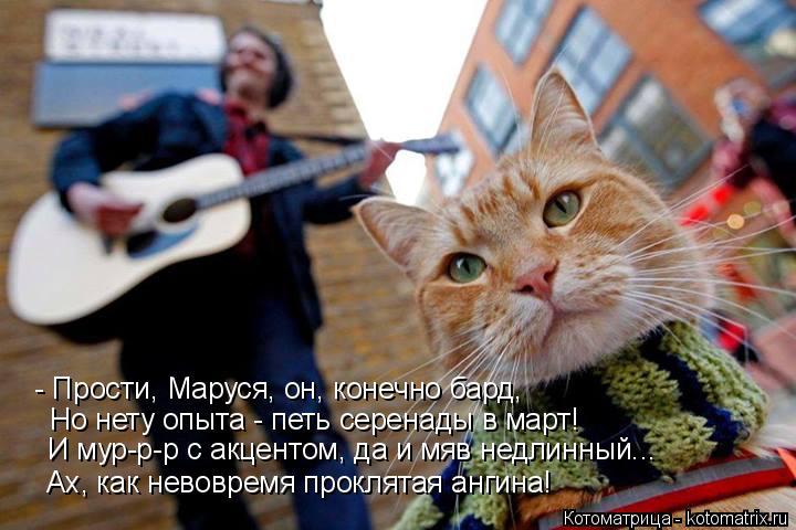 Котоматрица: - Прости, Маруся, он, конечно бард, Но нету опыта - петь серенады в март! И мур-р-р с акцентом, да и мяв недлинный...  Ах, как невовремя проклятая а