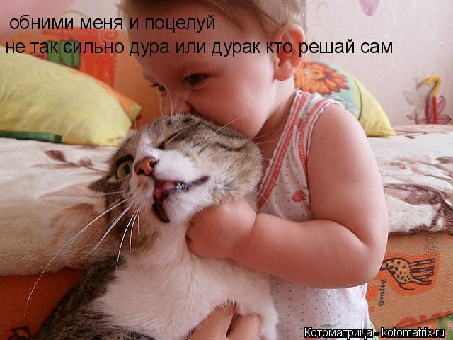 Котоматрица: обними меня и поцелуй не так сильно дура или дурак кто решай сам