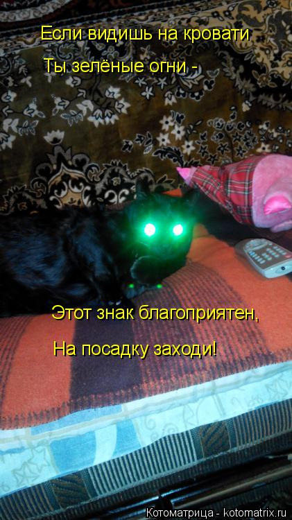 Котоматрица: Если видишь на кровати Ты зелёные огни - Этот знак благоприятен, На посадку заходи!