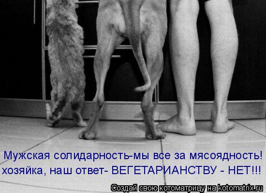 Котоматрица: Мужская солидарность-мы все за мясоядность! хозяйка, наш ответ- ВЕГЕТАРИАНСТВУ - НЕТ!!!