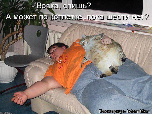 Котоматрица: - Вовка, спишь? А может по котлетке, пока шести нет?