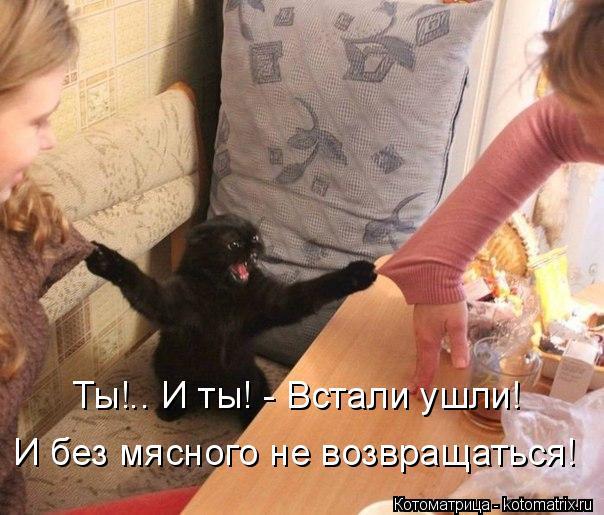 Котоматрица: Ты!.. И ты! - Встали ушли! И без мясного не возвращаться!