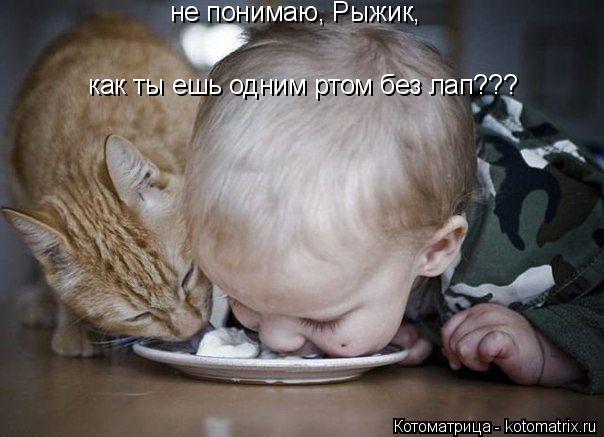 Котоматрица: не понимаю, Рыжик, как ты ешь одним ртом без лап???