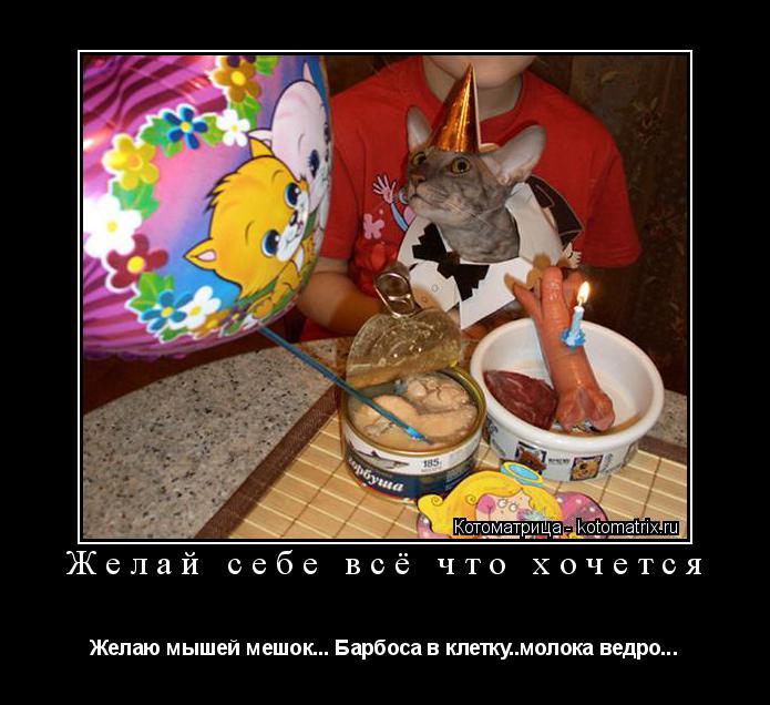 Котоматрица: Желай себе всё что хочется Желаю мышей мешок... Барбоса в клетку..молока ведро...