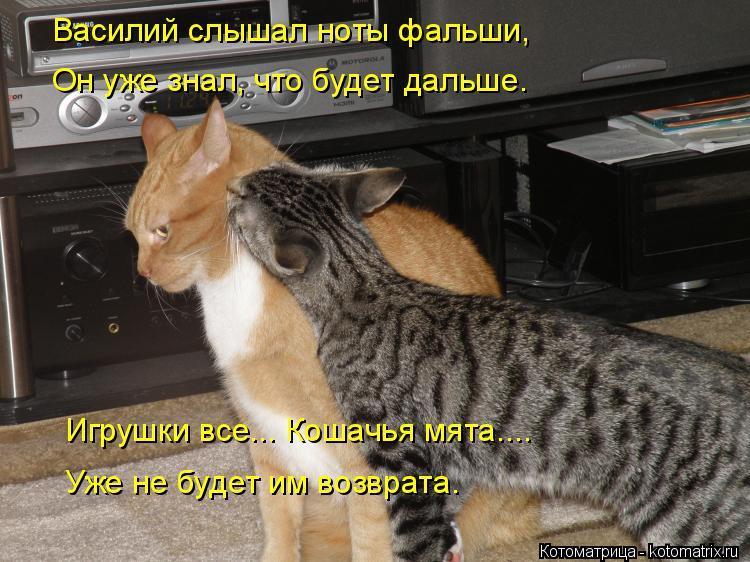 Котоматрица: Василий слышал ноты фальши, Он уже знал, что будет дальше. Игрушки все... Кошачья мята.... Уже не будет им возврата.