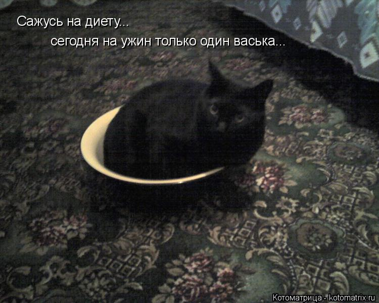 Котоматрица: Сажусь на диету... сегодня на ужин только один васька... хотя!!!