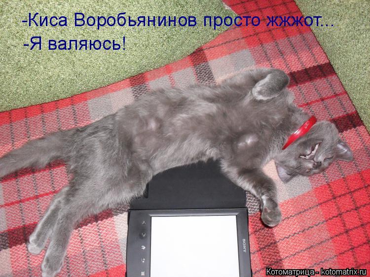 Котоматрица: -Киса Воробьянинов просто жжжот... -Я валяюсь!