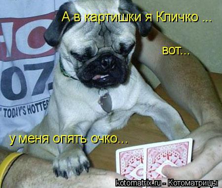 Котоматрица: А в картишки я Кличко ... вот... у меня опять очко...