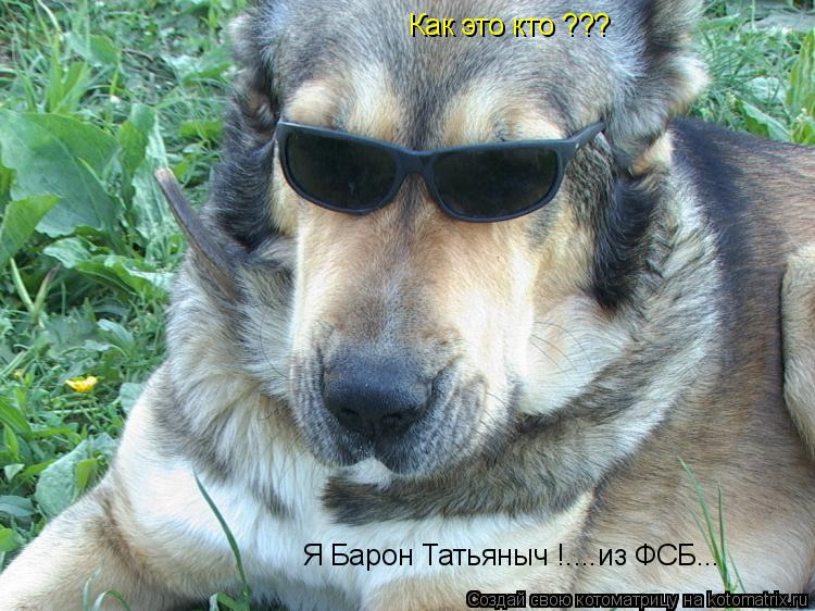 Котоматрица: Как это кто ??? Я Барон Татьяныч !....из ФСБ...
