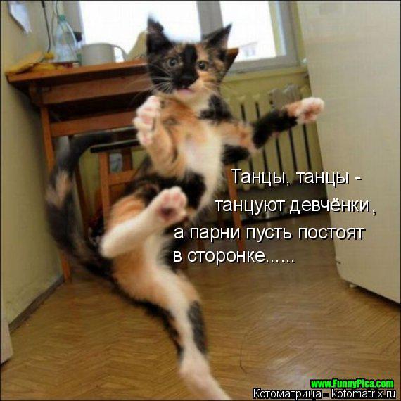Котоматрица: Танцы, танцы -  танцуют девчёнки , а парни пусть постоят в сторонке......
