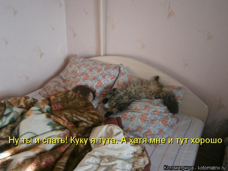 Котоматрица: Ну ты и спать! Куку я тута. А хатя мне и тут хорошо
