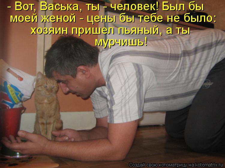 Котоматрица: - Вот, Васька, ты - человек! Был бы моей женой - цены бы тебе не было: хозяин пришел пьяный, а ты мурчишь!