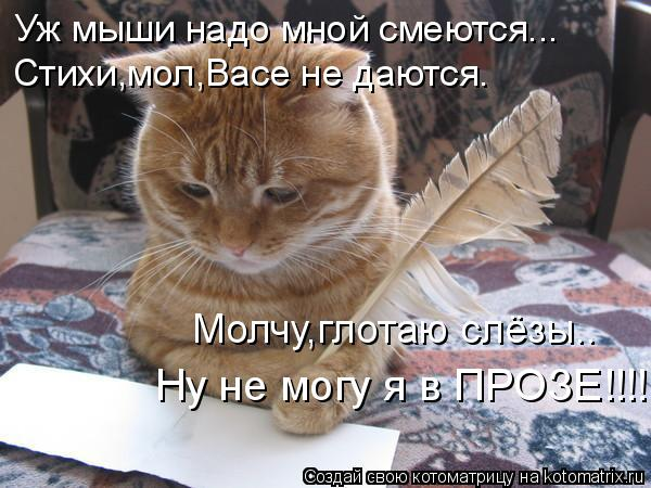 Котоматрица: Уж мыши надо мной смеются... Стихи,мол,Васе не даются. Молчу,глотаю слёзы.. Ну не могу я в ПРОЗЕ!!!!