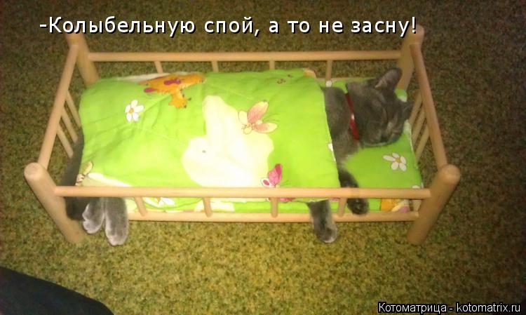 Котоматрица: -Колыбельную спой, а то не засну!