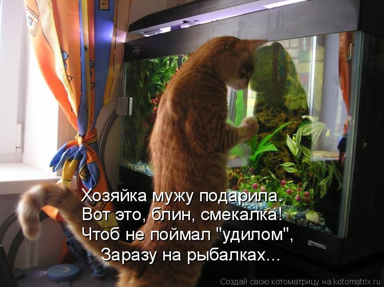 """Котоматрица: Хозяйка мужу подарила. Вот это, блин, смекалка! Чтоб не поймал """"удилом"""", Заразу на рыбалках..."""