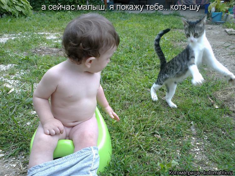 Котоматрица: а сейчас малыш, я покажу тебе.. котэ-шу