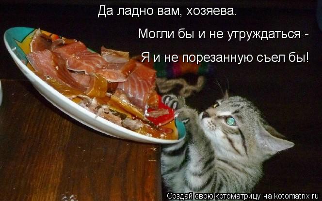 Котоматрица: Да ладно вам, хозяева. Могли бы и не утруждаться - Я и не порезанную съел бы!