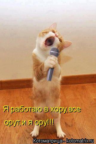 Котоматрица: Я работаю в хору,все  орут,и я ору!!!