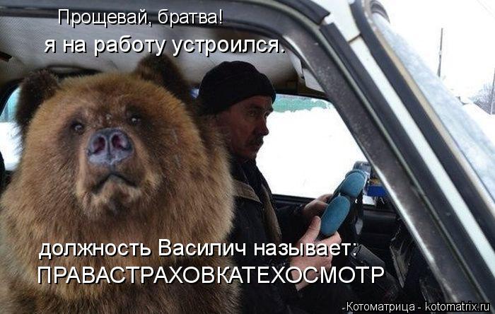 Котоматрица: Прощевай, братва! я на работу устроился. должность Василич называет: ПРАВАСТРАХОВКАТЕХОСМОТР