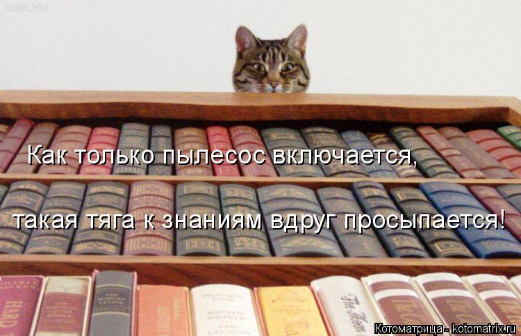 Котоматрица: Как только пылесос включается, такая тяга к знаниям вдруг просыпается!