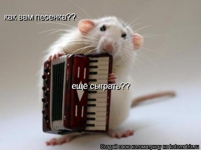 Котоматрица: как вам песенка?? как вам песенка?? ещё сыграть?? ещё сыграть??
