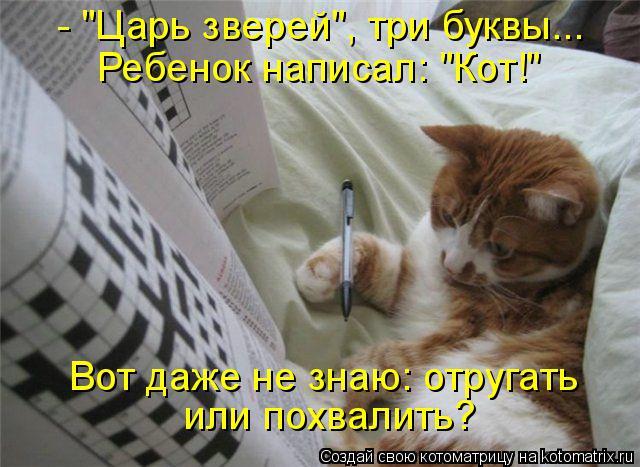 """Котоматрица: - """"Царь зверей"""", три буквы... Ребенок написал: """"Кот!"""" Вот даже не знаю: отругать или похвалить?"""