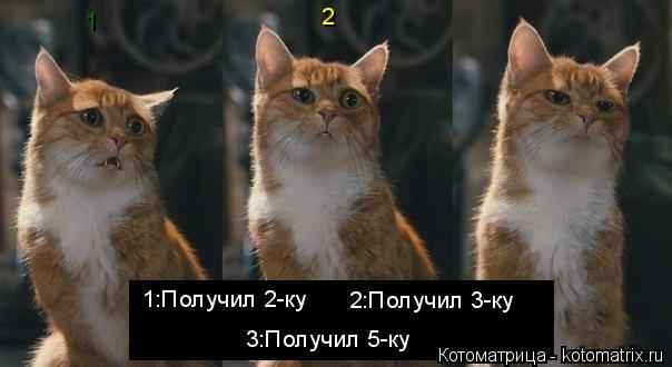 Котоматрица: 1:Получил 2-ку 2:Получил 3-ку 3:Получил 5-ку 1 2