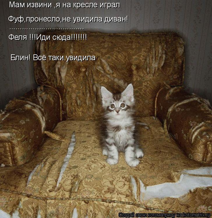 Котоматрица: Мам извини ,я на кресле играл Феля !!!Иди сюда!!!!!!! Блин! Всё таки увидила Фуф,пронесло,не увидила диван! ...................................