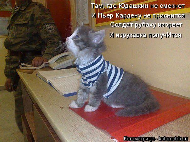 Котоматрица: Там, где Юдашкин не смекнет И Пьер Кардену не приснится Солдат рубаху изорвет И изрукавка получИтся