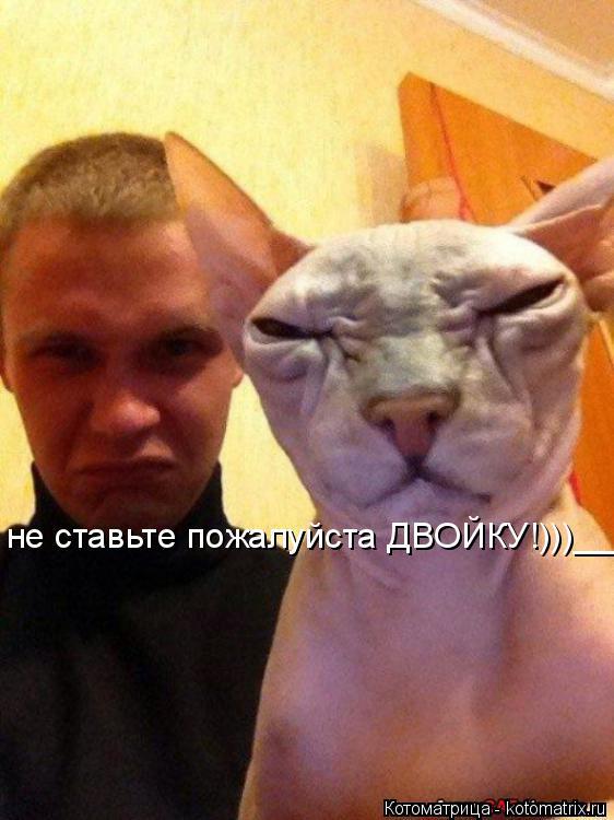Котоматрица: не ставьте пожалуйста ДВОЙКУ!)))_______))____