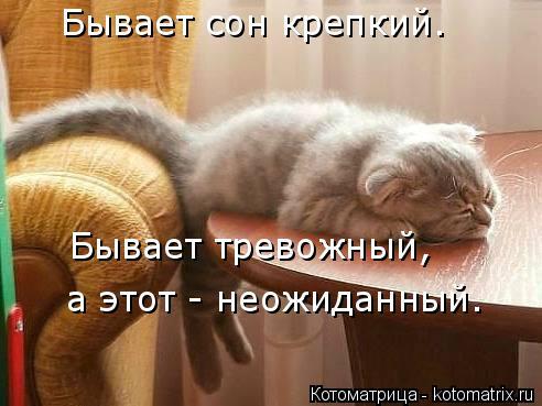 Котоматрица: Бывает сон крепкий. Бывает тревожный, а этот - неожиданный.