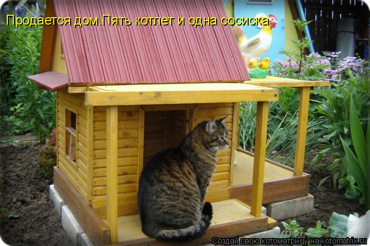Котоматрица: Продается дом.Пять котлет и одна сосиска