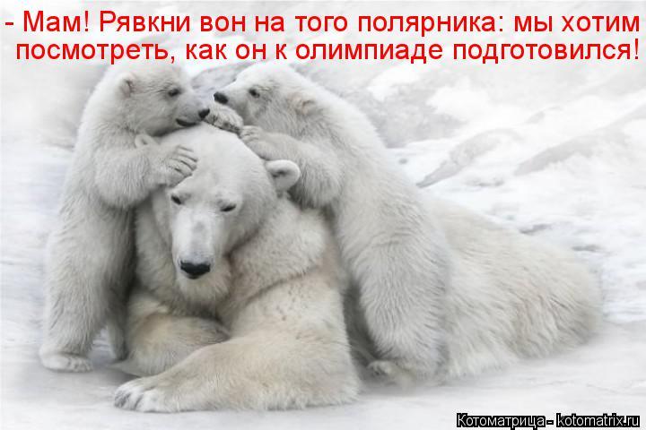 Котоматрица: - Мам! Рявкни вон на того полярника: мы хотим  посмотреть, как он к олимпиаде подготовился!