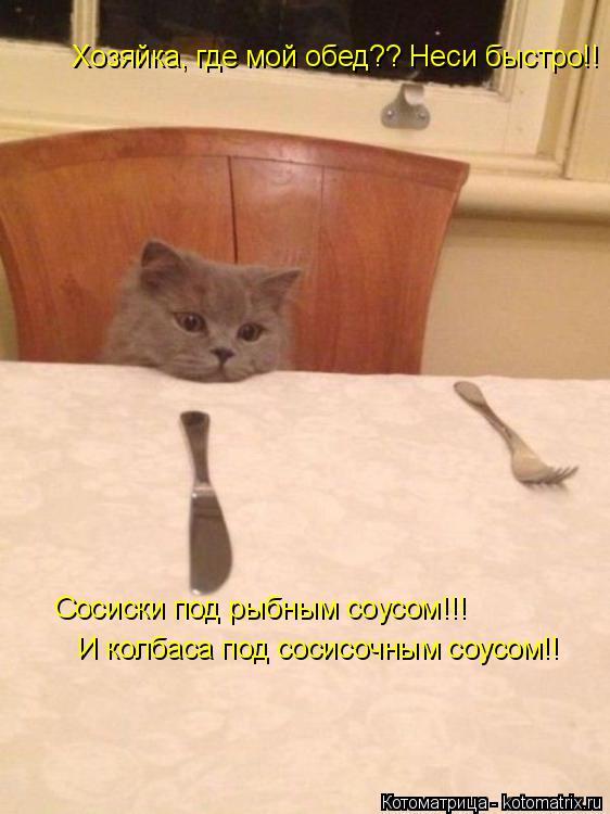 Котоматрица: Сосиски под рыбным соусом!!! И колбаса под сосисочным соусом!! Хозяйка, где мой обед?? Неси быстро!!