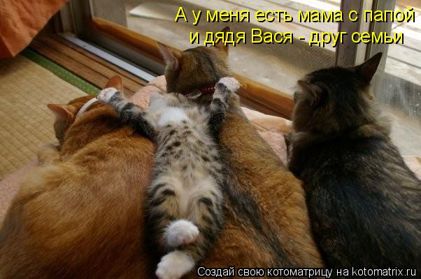 Котоматрица: А у меня есть мама с папой и дядя Вася - друг семьи