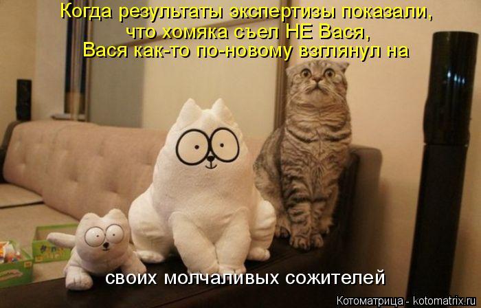 Котоматрица: Когда результаты экспертизы показали, что хомяка съел НЕ Вася, Вася как-то по-новому взглянул на своих молчаливых сожителей