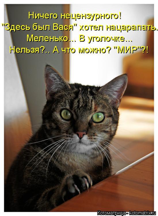 """Котоматрица: Ничего нецензурного! """"Здесь был Вася"""" хотел нацарапать. Меленько... В уголочке... Нельзя?.. А что можно? """"МИР""""?!"""