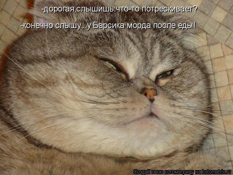Котоматрица: -дорогая,слышишь:что-то потрескивает? -конечно слышу...у Барсика морда после еды!