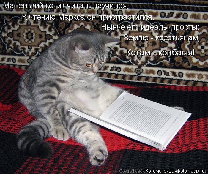 Котоматрица: Маленький котик читать научился, К чтению Маркса он пристрастился. Нынче его идеалы просты: Землю - крестьянам,  Котам - колбасы!