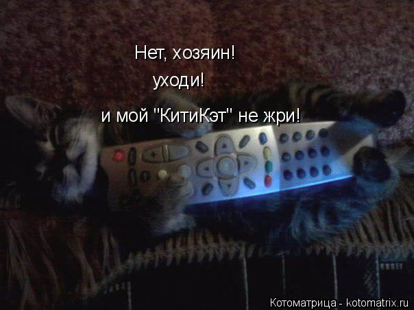 """Котоматрица: Нет, хозяин! уходи! и мой """"КитиКэт"""" не жри!"""