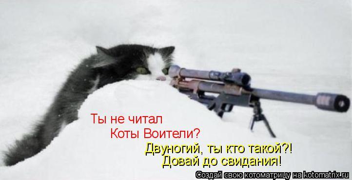 Котоматрица: Ты не читал Коты Воители? Двуногий, ты кто такой?! Довай до свидания!
