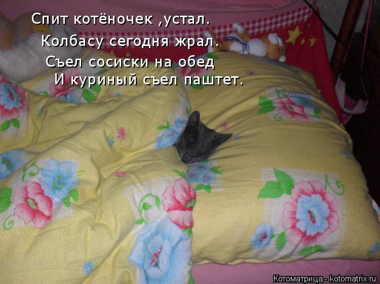 Котоматрица: Спит котёночек ,устал. Колбасу сегодня жрал. Съел сосиски на обед И куриный съел паштет И куриный съел паштет.