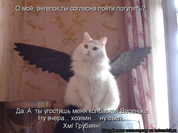 Котоматрица: О мой, ангелок,ты согласна пойти погулять?    Да. А  ты угостишь меня колбаской,Васенька. Ну вчера... хозяин...  ну съел.  Ну вчера... хозяин...  ну съ