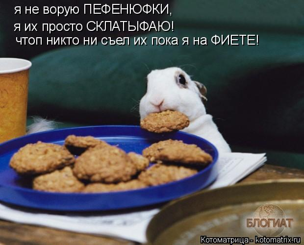 Котоматрица: я не ворую ПЕФЕНЮФКИ, я их просто СКЛАТЫФАЮ! чтоп никто ни съел их пока я на ФИЕТЕ!