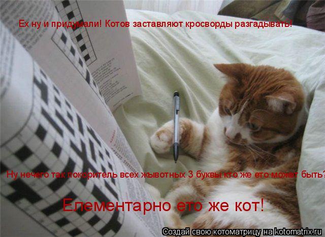 Котоматрица: Ех ну и придумали! Котов заставляют кросворды разгадывать! Ну нечего так покоритель всех жывотных 3 буквы кто же ето может быть? Елементарно