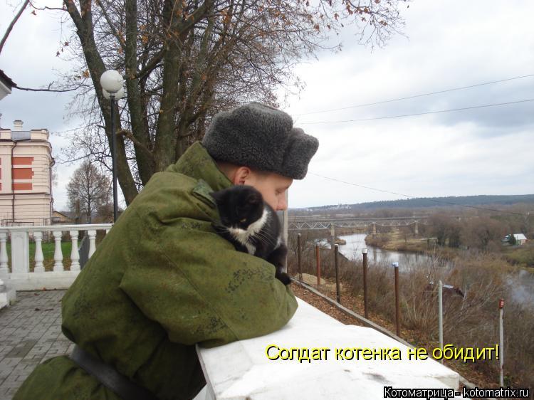 Котоматрица: Солдат котенка не обидит!